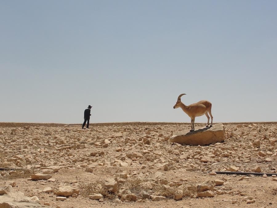 Tomado en el desierto de Mitzpe Ramon