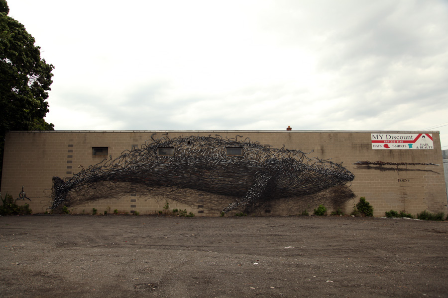 DALeast-_discount evolution_,rochester ny-usa.2012.7.a2