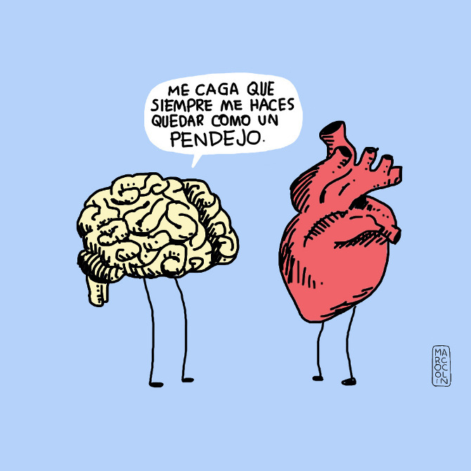 corazoncerebro