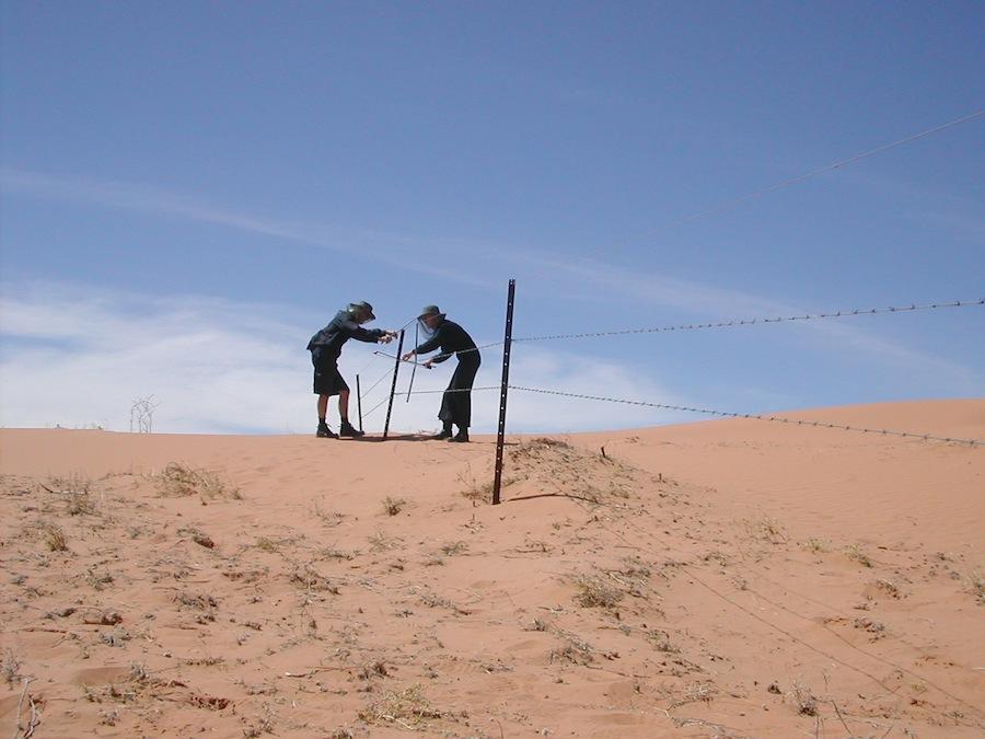 Jon Rose and Hollis Taylor (Strezlecki Desert, Australia)