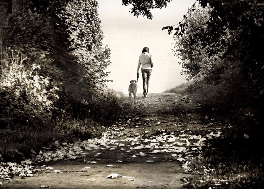 cultura de caminar