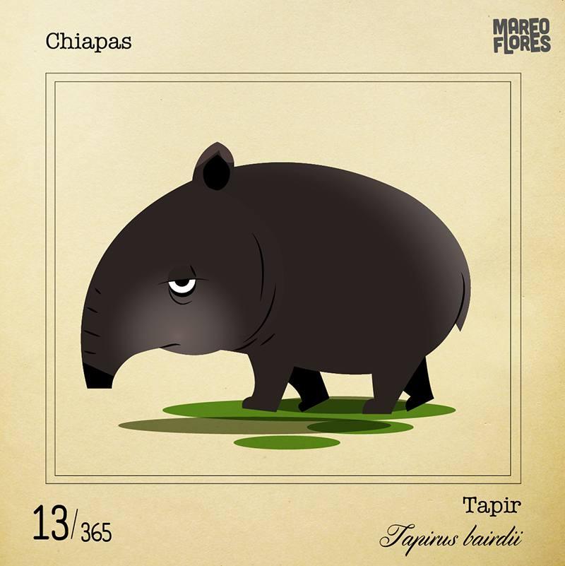 13-Chiapas