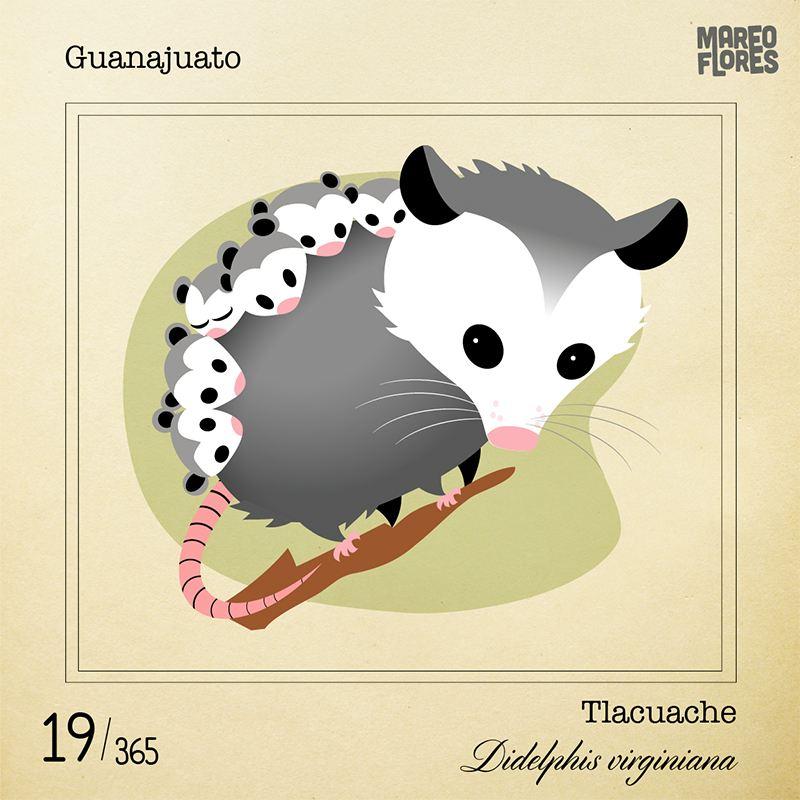 19-Guanajuato