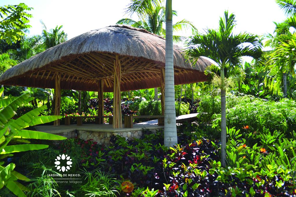jardintropical1