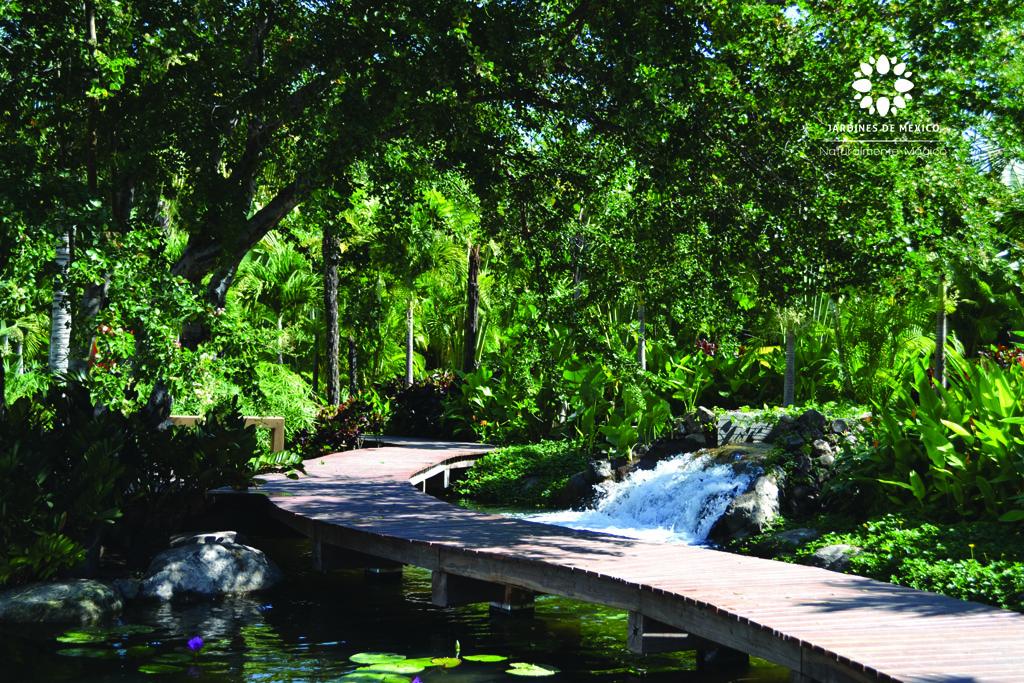 jardintropical2