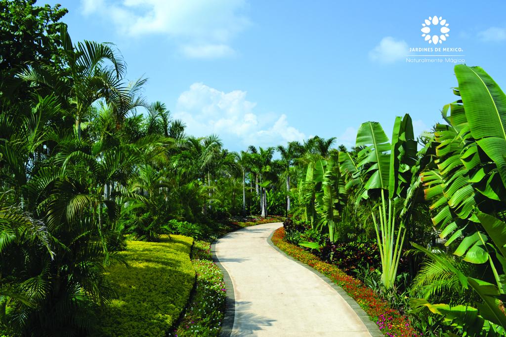 jardintropical4