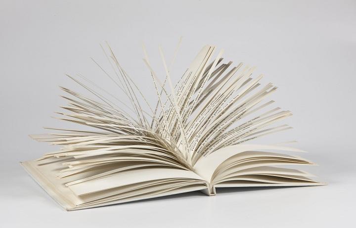 Los versos de la obra de Queneau son lengüetas que se pueden ir combinando de distintas formas