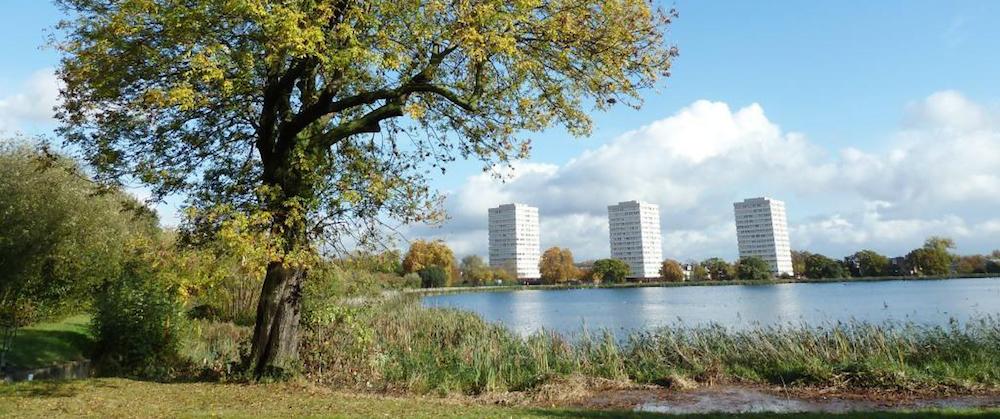 woodberry-wetlands-landscape-lores (1)