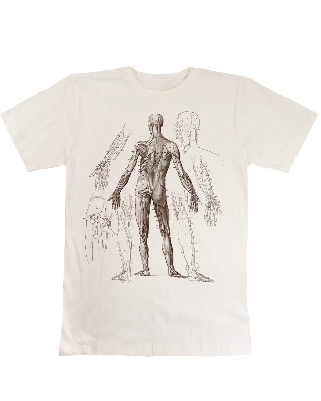 Anatomy-Shirt