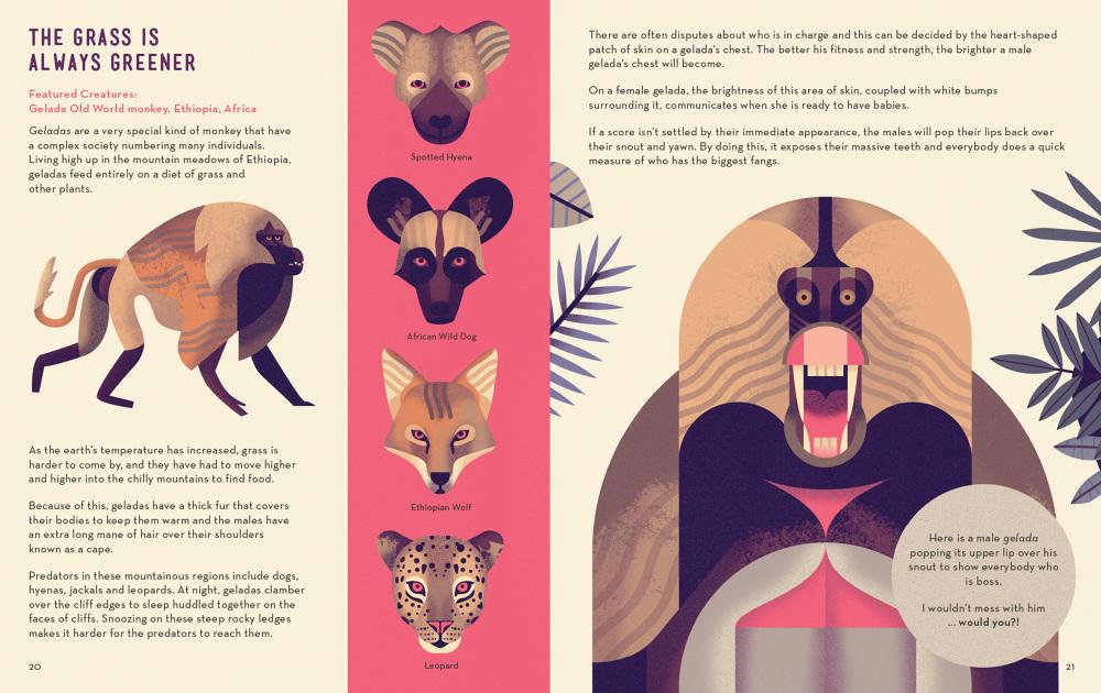Mad-About-Monkeys-Owen-Davey-Illustration-Gelada_1000