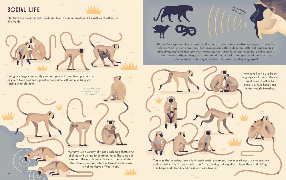 Mad-About-Monkeys-Owen-Davey-Illustration-Social_1000