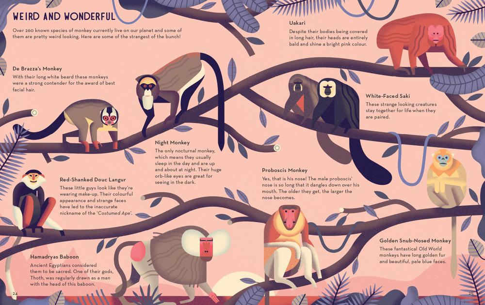Mad-About-Monkeys-Owen-Davey-Illustration-Weird-Wonderful_1000