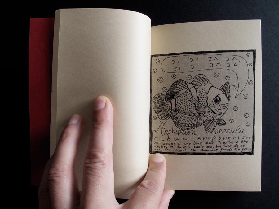 interior_cuaderno