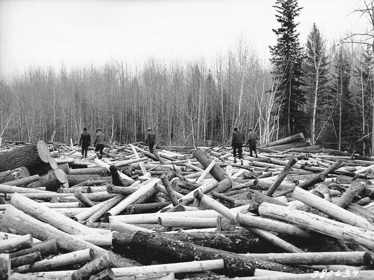 Loggers on Log Jam