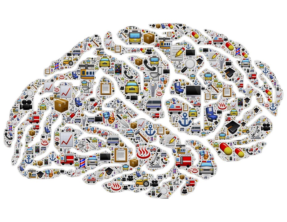 brain-954823_960_720
