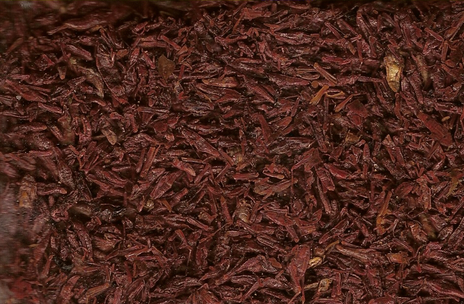 Chapulines, Foto: Nsaum http://commons.wikimedia.org/wiki/File:Baby_chapulines.jpg