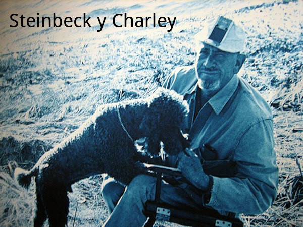 Steinbeck con Charley