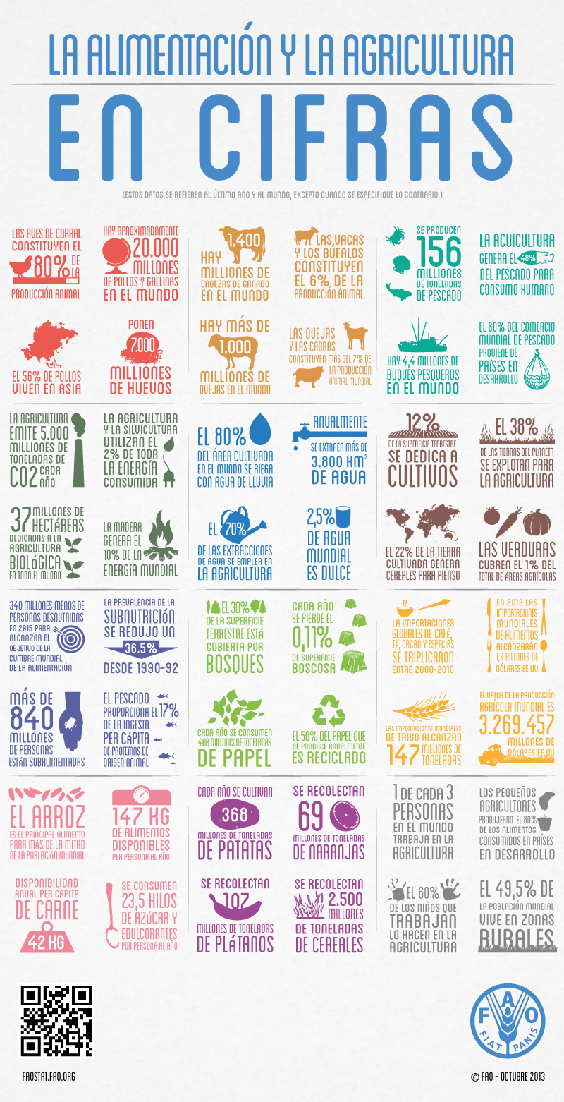 FAO-Infographic-food-ag-es