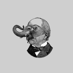 elefantesblancos