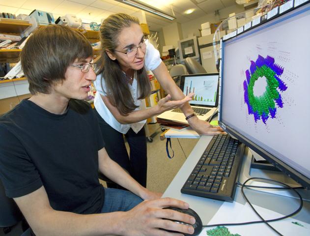 La biofísica Eva Nogales, en su laboratorio / LBL