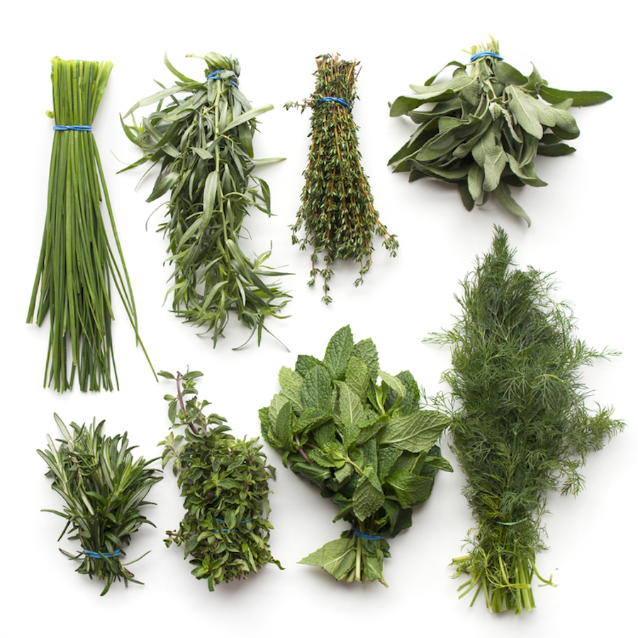 Herbs+--+wrightkitchen.com