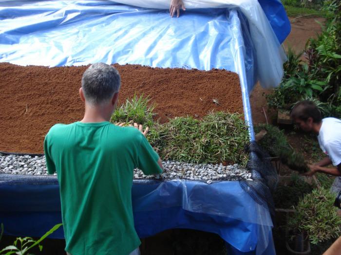 3- Plantando a grama - Imgur