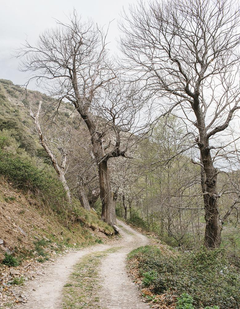 Path to Matavenero