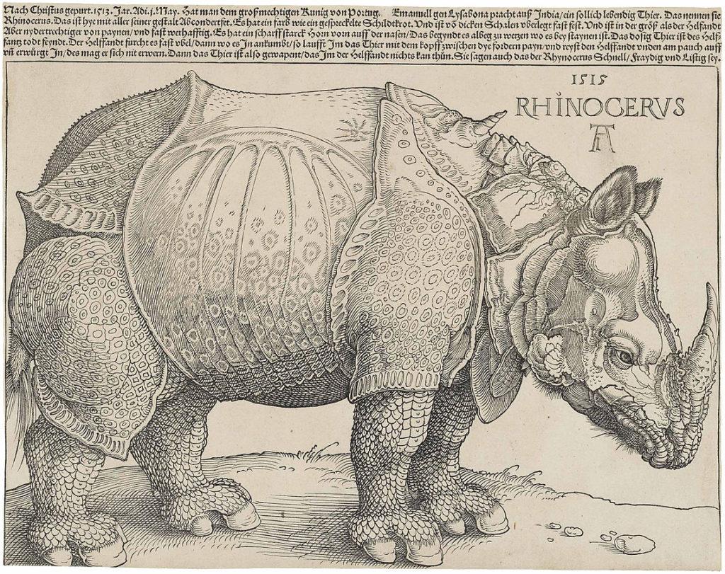 1136px-Dürer's_Rhinoceros,_1515