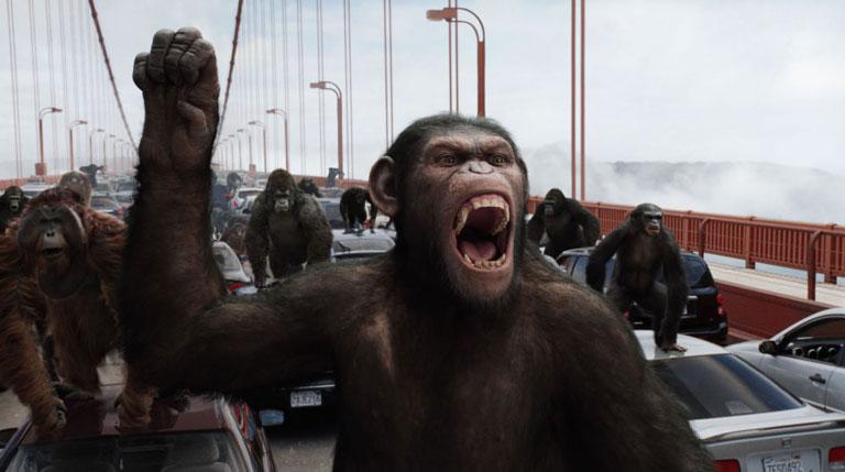 apes-1024x572