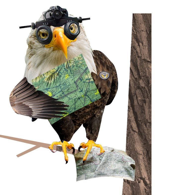 aviario twitter