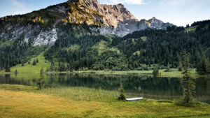¡Ya tenemos compañeros de viaje a la naturaleza suiza!