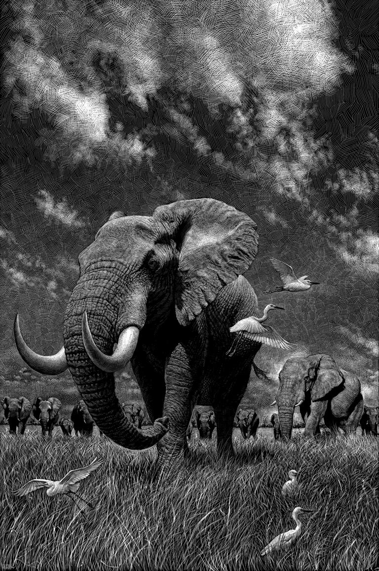 ricardo martinez elephant-bw-copia