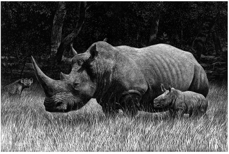 ricardo martinez rinoceronte-copia
