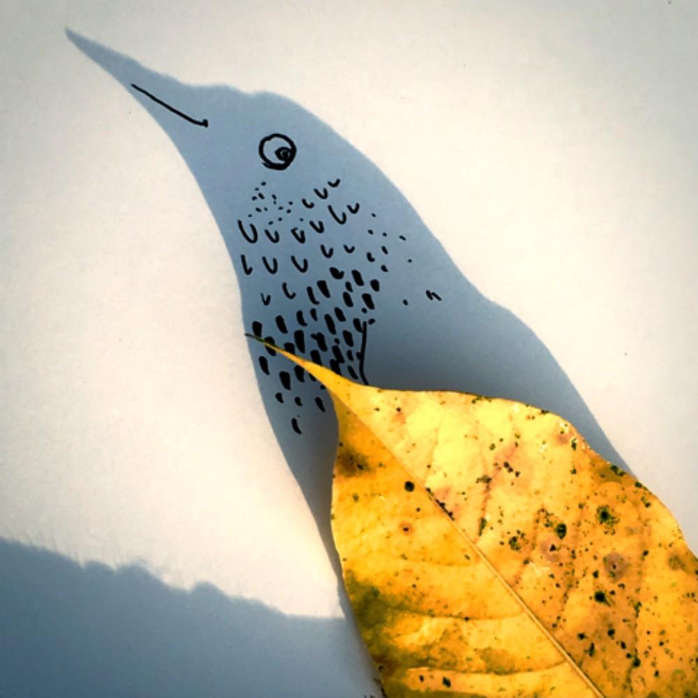 birdyonshoreleaf