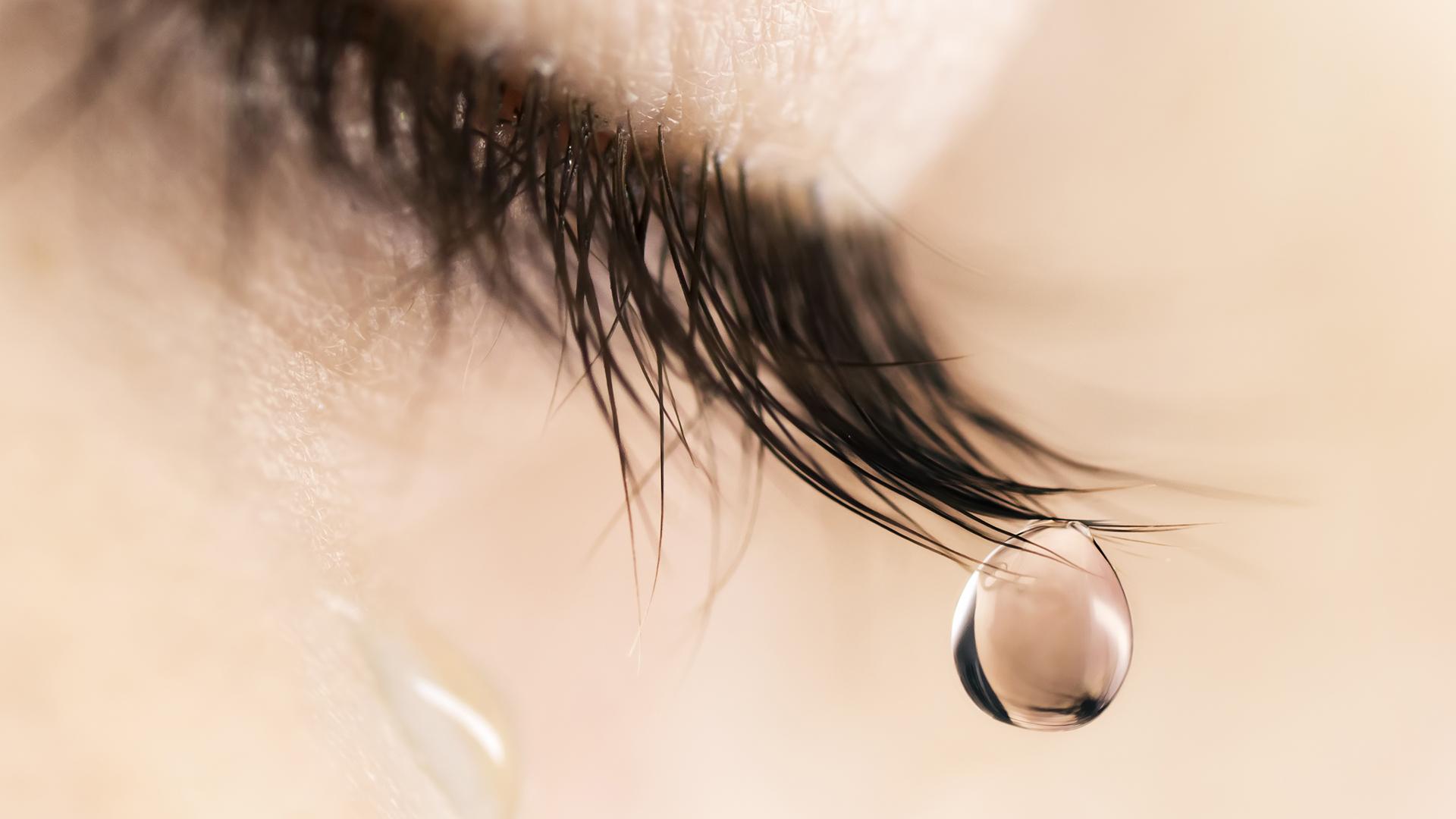 Los Tres Tipos De Lágrimas De Risa De Llanto Y De Pelar Cebollas