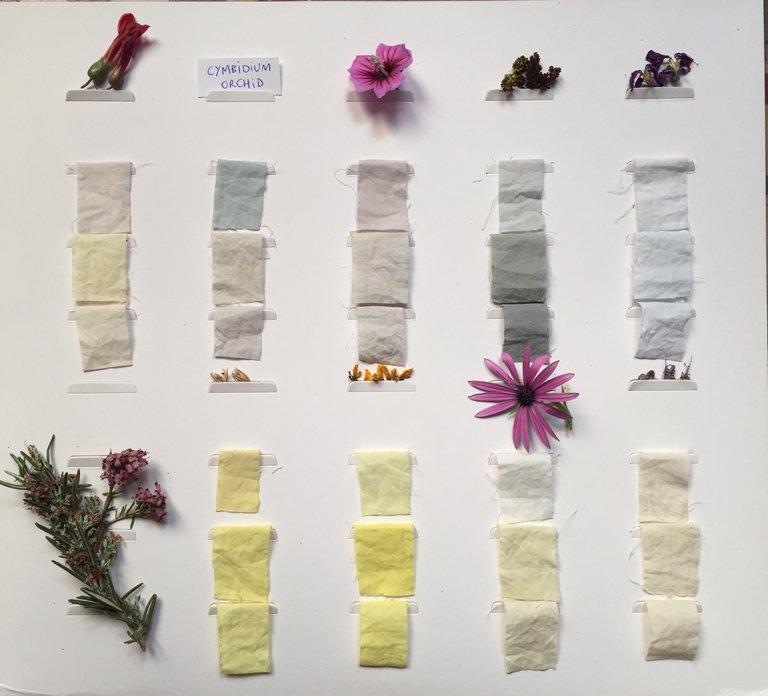 Flors al Mercat