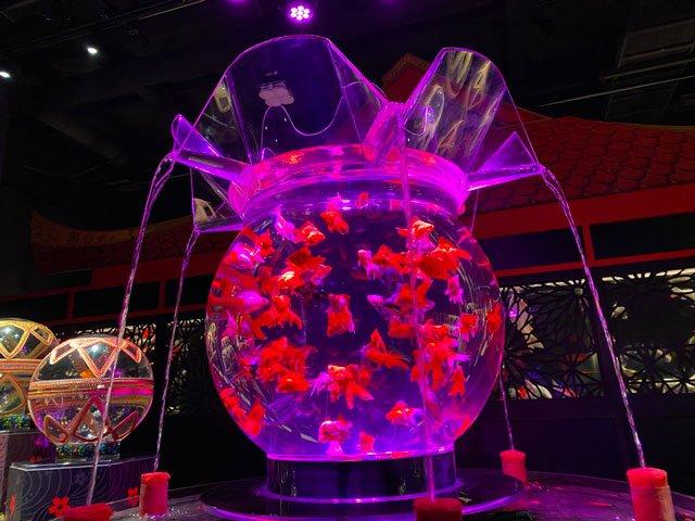 Art Aquarium de Japón